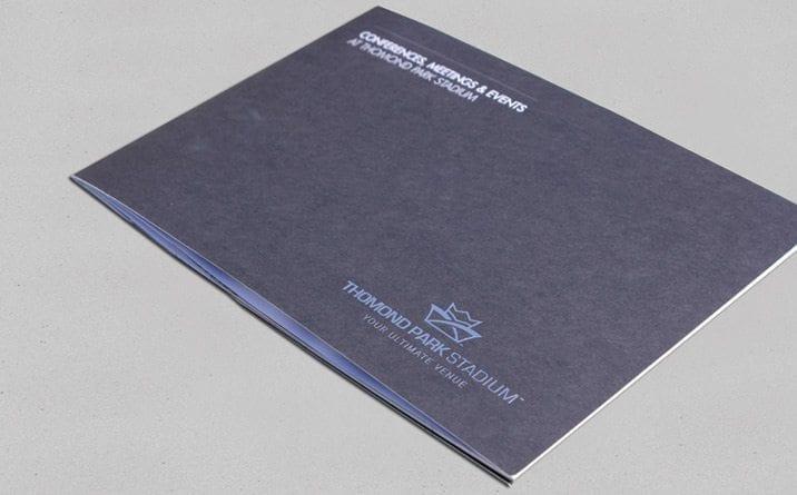 Web developer Munster project Thomond park brochure