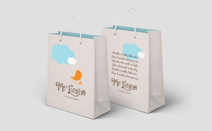 Website design project Moleanabh bags