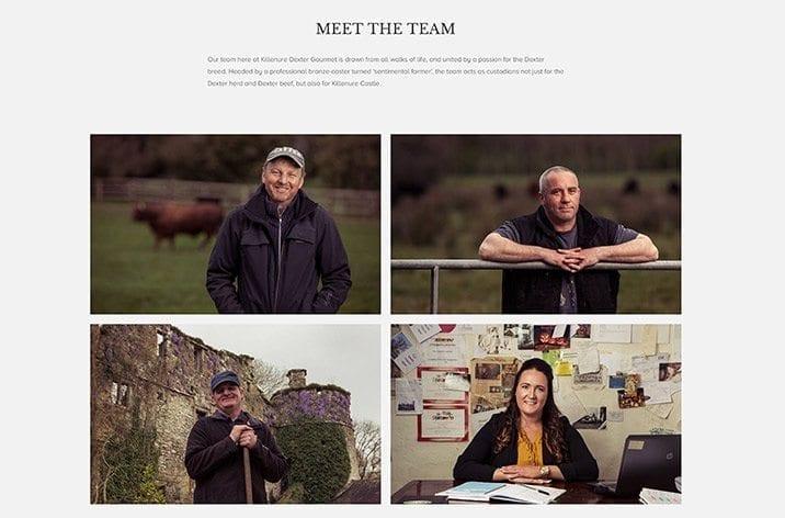 Web site designer in Limerick Dexter beef 2