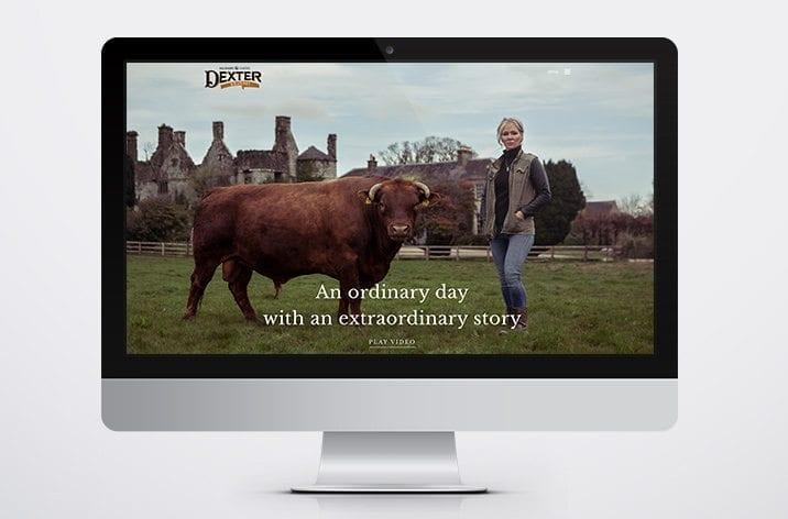 Branding Limerick, Ireland Dexter beef 3