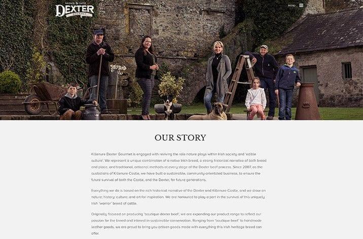 Website design project Mac Screen 716