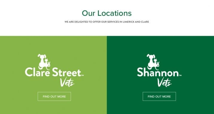 Web Design for Vet Clinics in Limerick and Shannon