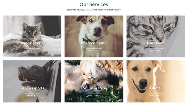 Rockhall Vet Services in Limerick and Shannon