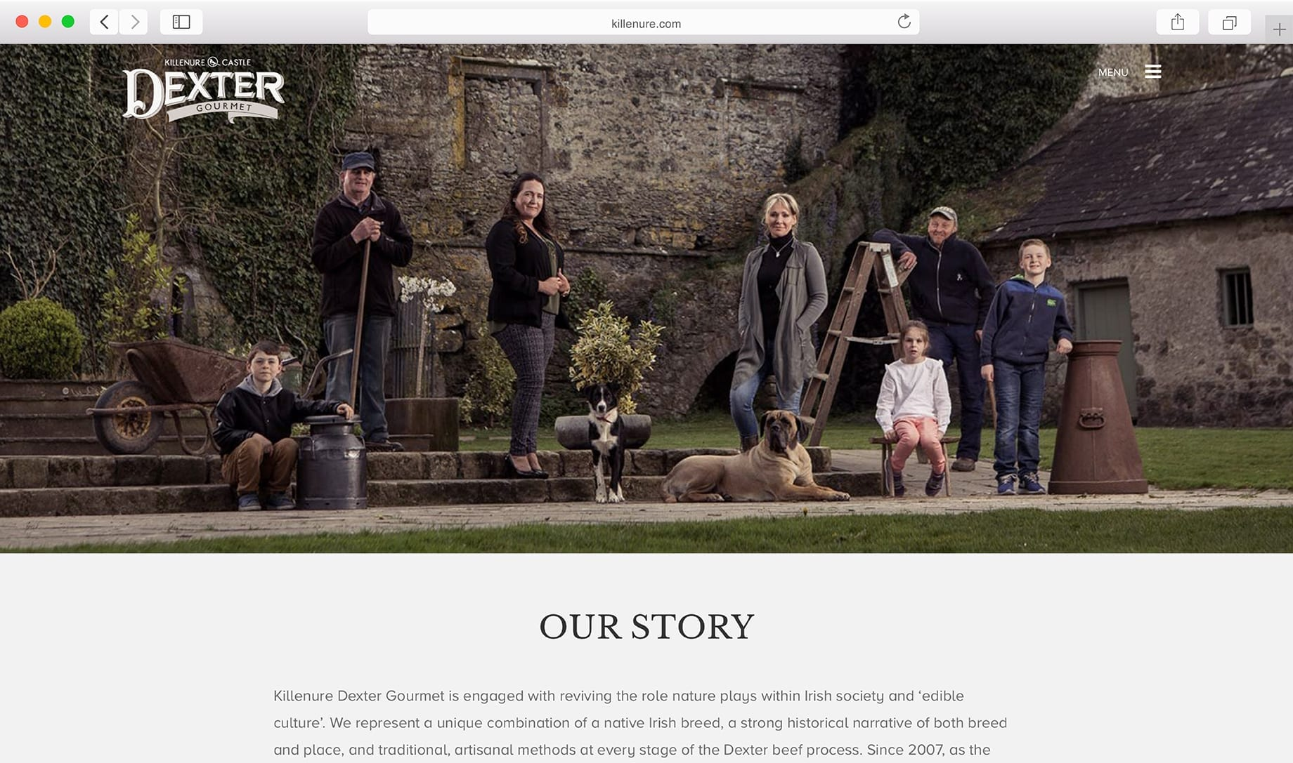 Killenure Website Screenshot 1
