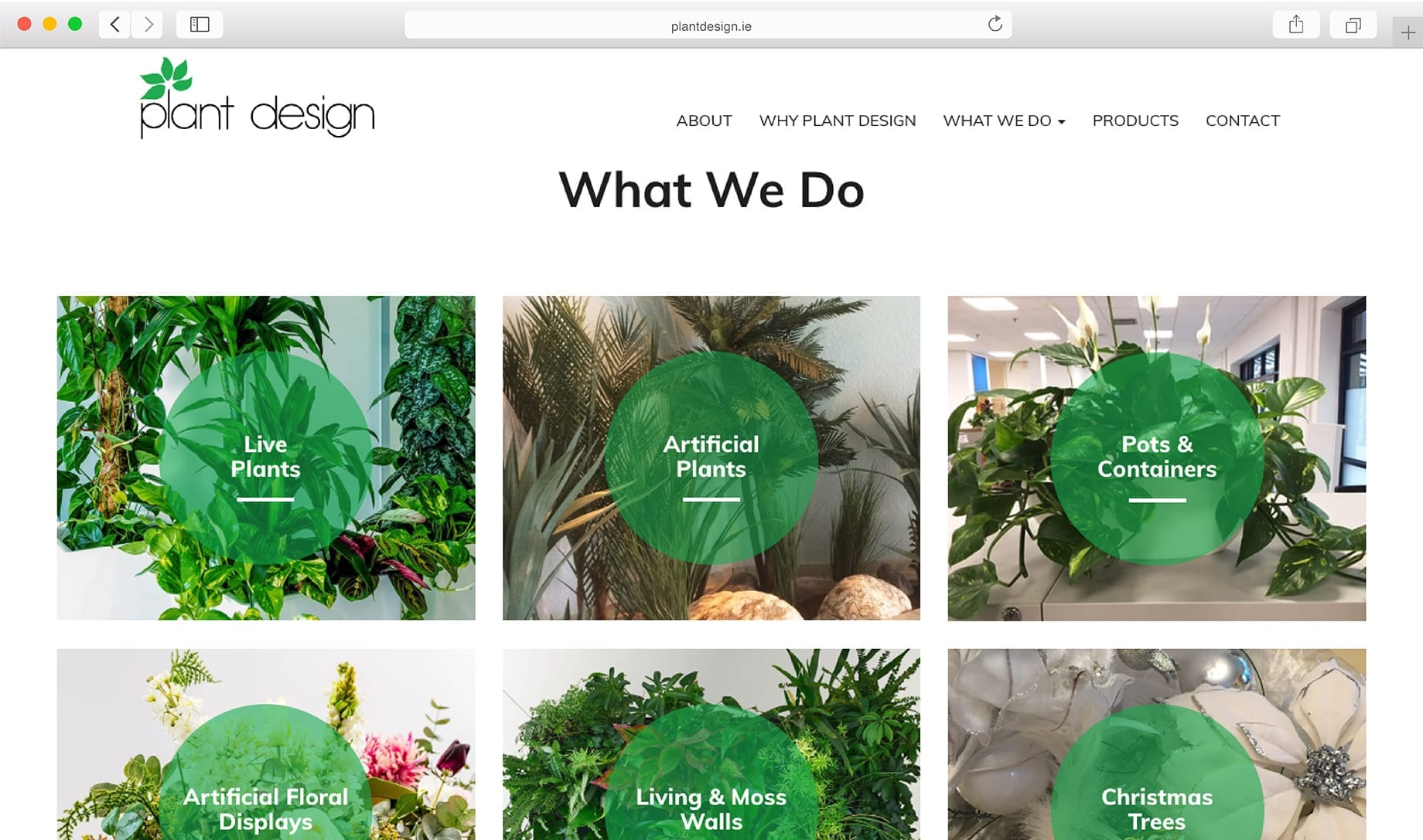 What we do catalog preview