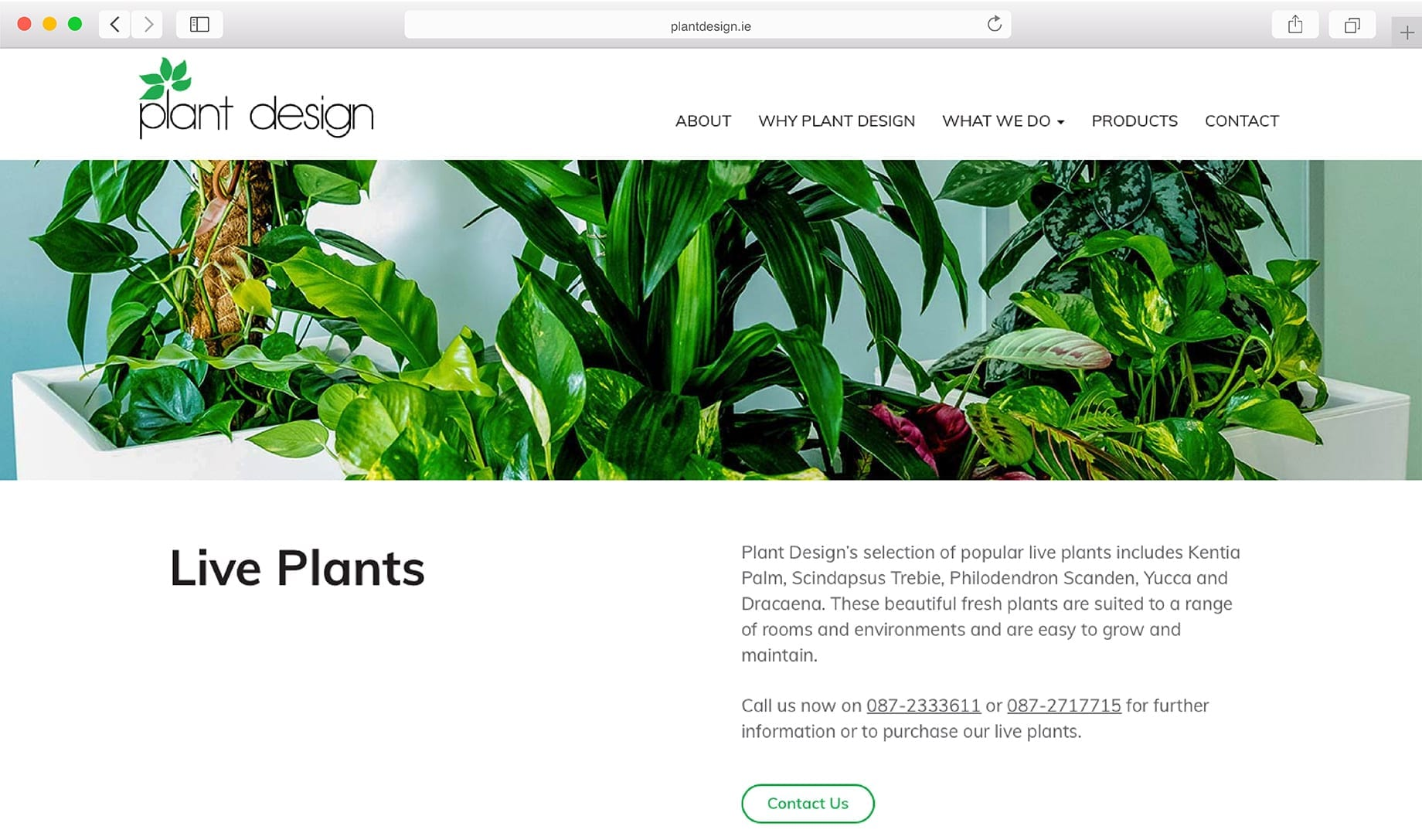 Ecommerce website design options
